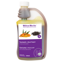 Curcuma + Poivre noir  - hilton herbs